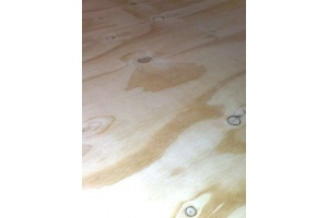 softwood_plywood